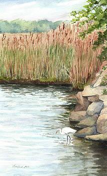 White Egret by Vikki Bouffard