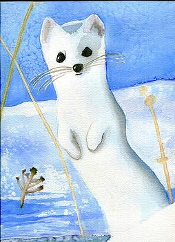 White Ermine by Laura O'Neal