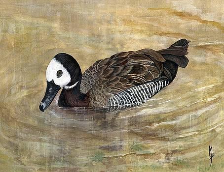 White-faced Whistling Duck by Marsha Friedman