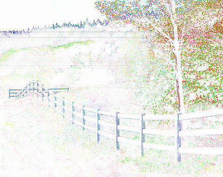 White Fence by David Strong