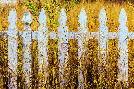 White Fence In The Weeds by Garry Gay