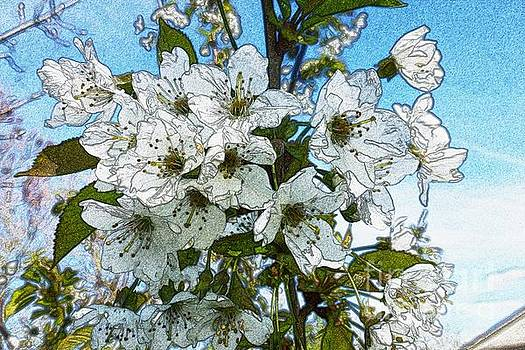 White Flowers - Variation 1 by Jean Bernard Roussilhe