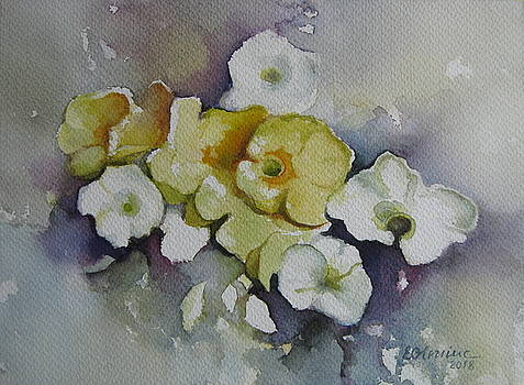 White flowers, yellow flowers... by Elena Oleniuc