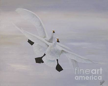 White Geese Flying by Shirley Lennon
