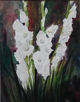 White Gladiolas by Dwight Williams