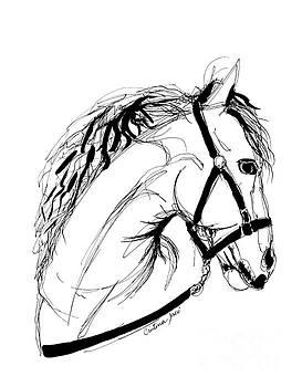 White Horse by Cristina Jaco