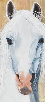 White Horse on wood by Debbie LaFrance