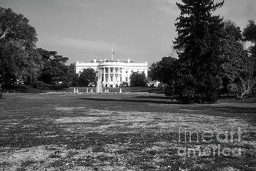 Bob Phillips - White House Lawn 2