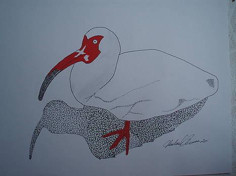 White Ibis by Michael Runner
