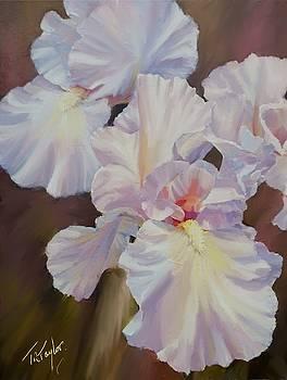 White Iris by Ralph Taylor
