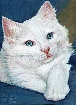 White Kitten by Angela Finney