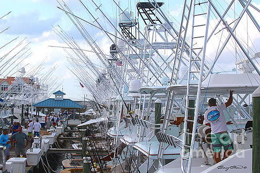 White Marlin Open Docks by Carey Chen