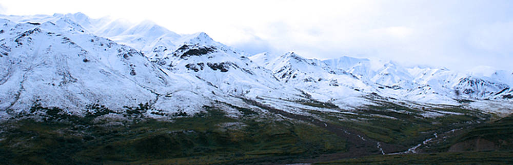White Mountains in Alaska by Preston Zeller