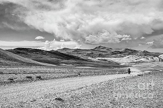 Jamie Pham - White Mountains Ride