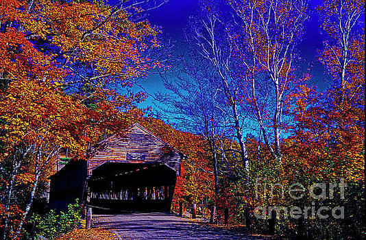 White Mountian National Park Forest Albany covered bridge  by Tom Jelen