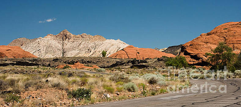 White Navajo Sandstone Petrified Sand Dune by MaryJane Armstrong
