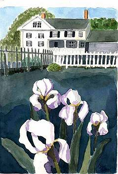 White on White by Jane Croteau