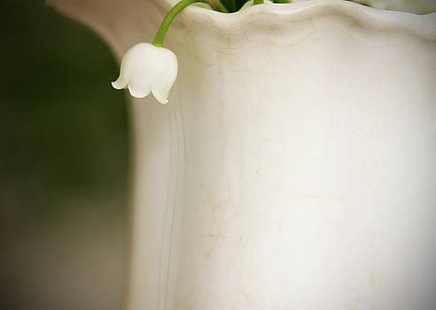 White on White by Kelly Lucero