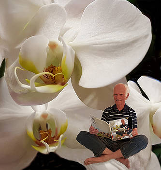 White Orchids by CD Ostenak