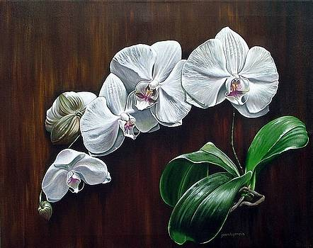White Orchids II by Joan Garcia