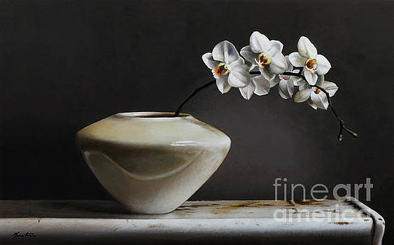 White Orchids  by Lawrence Preston