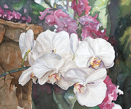 White Orchids by Lisa Prusinski