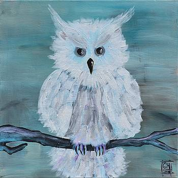 White Owl by Holly Donohoe