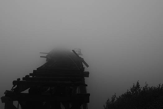 White Pass Trestle 2 by Lawrence Birk