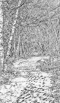 Leif Sohlman - White path BW #g0