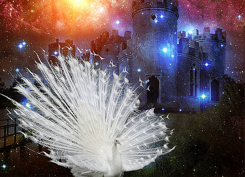 White Peacock Castle by Aisha Abdelhamid