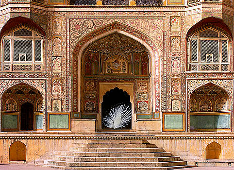 White Peacock Offers Wide Welcome to Amber Palace by Aisha Abdelhamid