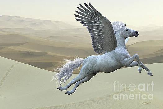 Corey Ford - White Pegasus Horse