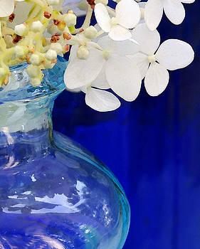 White Petals by Catherine Alfidi