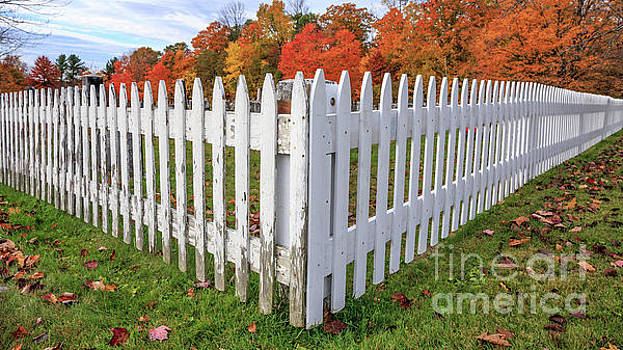 White Picket Fence Etna New Hampshire Fall Foliage by Edward Fielding