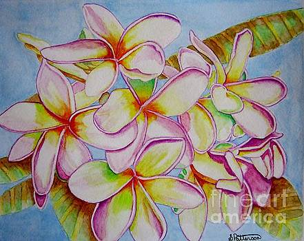 White Plumeria by Sharon Patterson