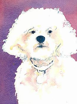 White Poodle by Lynn Babineau