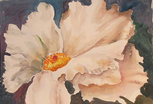 White Poppy by Linda Rupard
