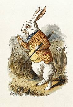 White Rabbit by John Tenniel