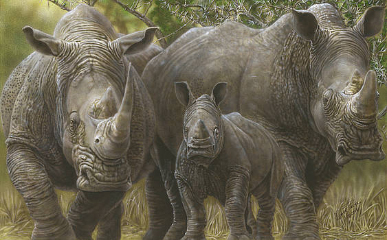 White Rhino Family - The Face That Only A Mother Could Love by Wayne Pruse