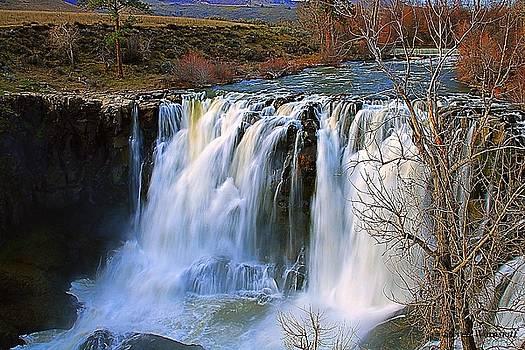 White River Falls in Bloom by Steve Warnstaff