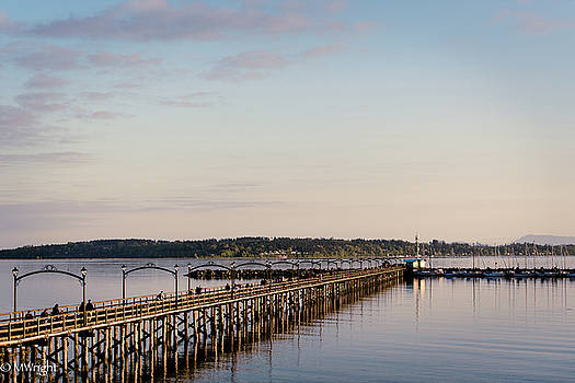 White Rock Pier by Michele Wright