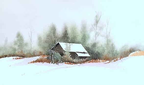 White Roof by William Renzulli
