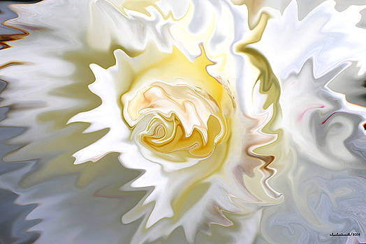 Michelle  BarlondSmith - White Rose Abstract
