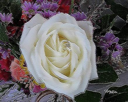 White Rose Mix #062 by Barbara Tristan