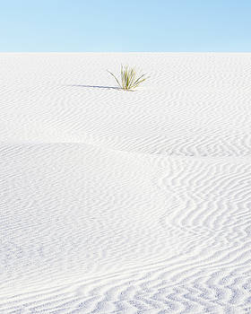 White Sand Dunes New Mexico Four by Bill Swindaman