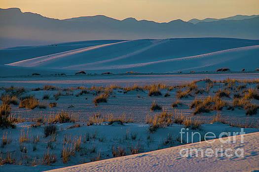 Bob Phillips - White Sands Landscape Two