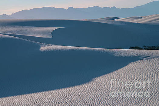 Bob Phillips - White Sands Light and Shadow