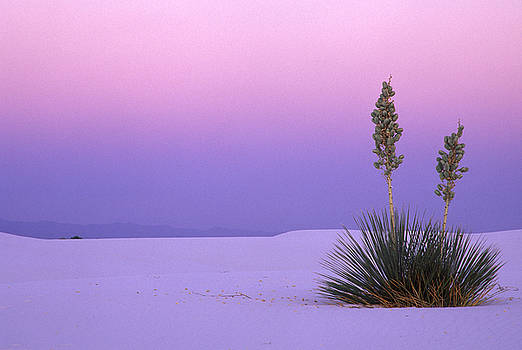 White Sands Twilight by Eric Foltz
