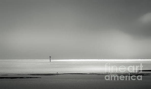 White Sandy Shore- B/W by Marvin Spates