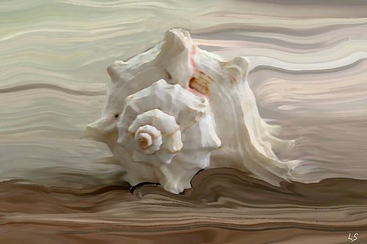 Linda Sannuti - White shell